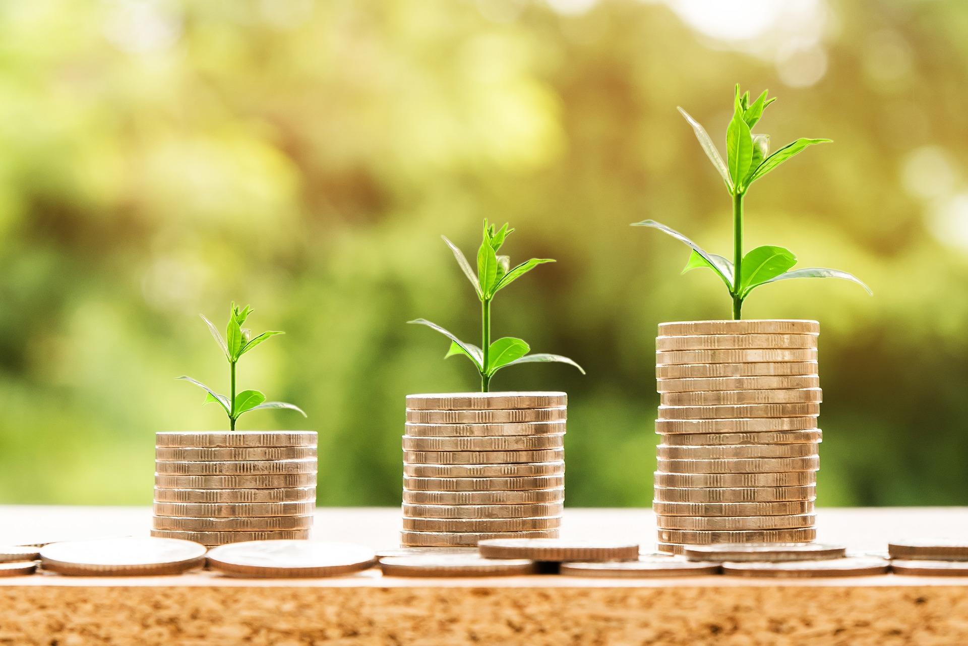 वित्तीय साक्षरता : अर्थ र आवश्यकता