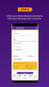 web network payment online